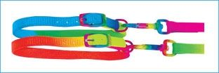 Collar & Lead Set Rainbow